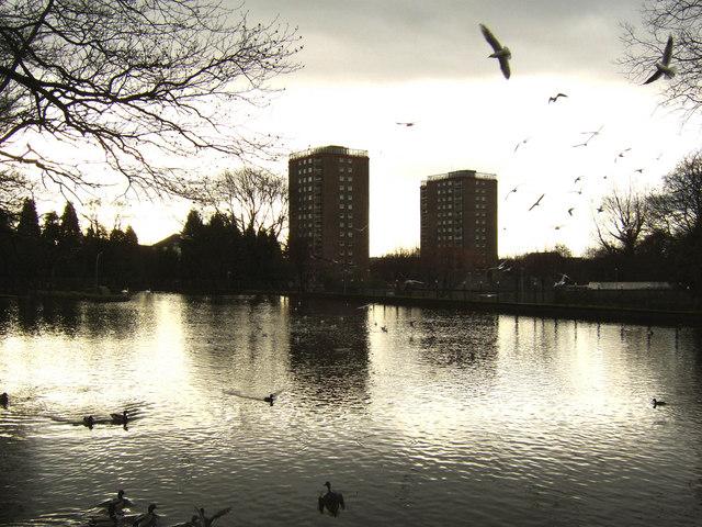 Duck Pond, Dalmuir Park
