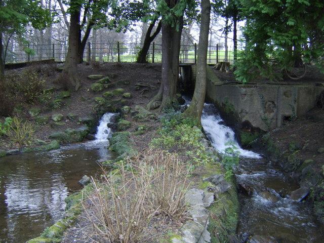 Stream in Dalmuir Park