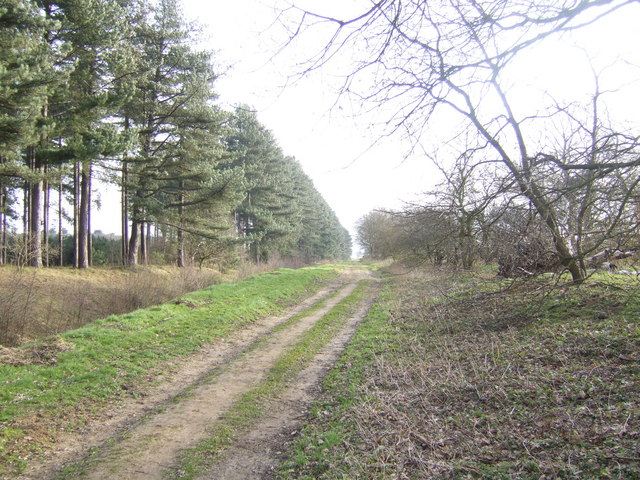 Bridleway to Blyton