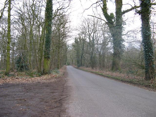 Woodland.