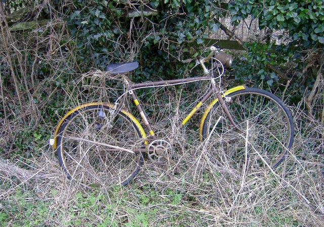 Bicycle in hedge