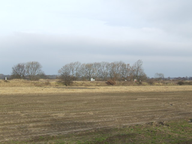 Fields north of the A159