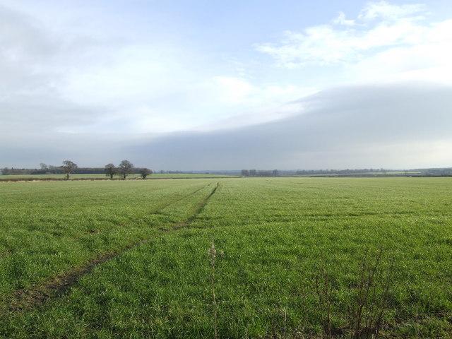 Open fields east of Gainsborough