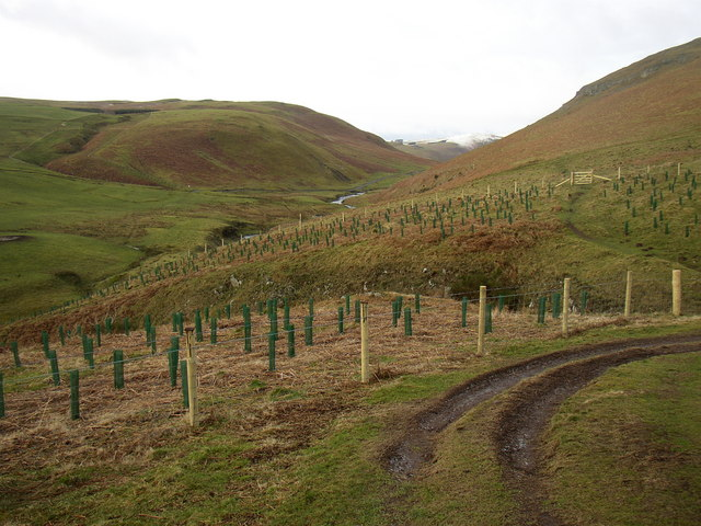 Pass Peth Sike, Upper Coquet Dale