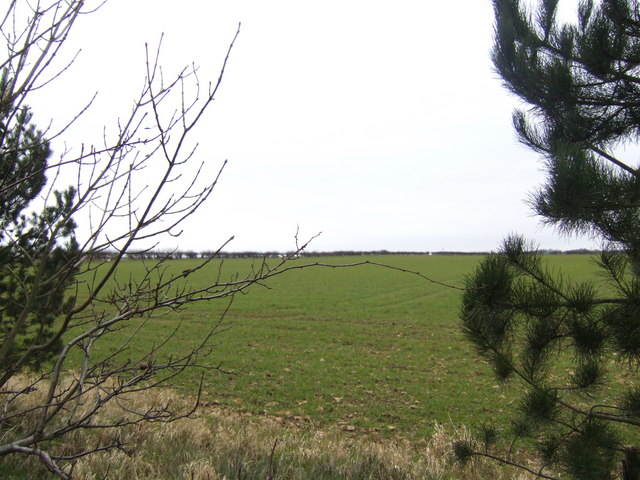 Fields west of the A15