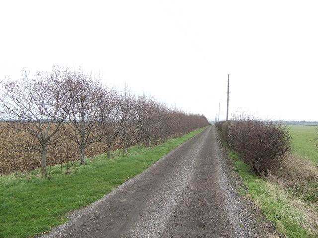 Road to White House Farm