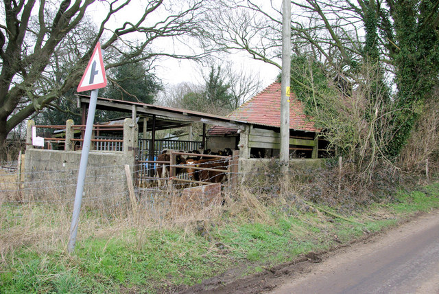 Cattleshed, Ridley Court Farm
