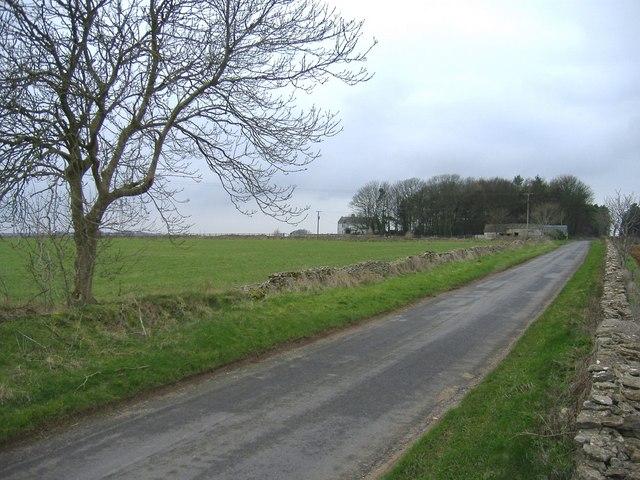 Beech Lane and Starveall