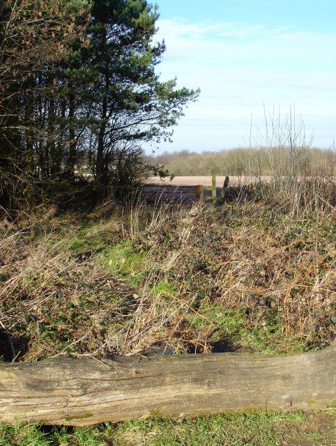 Footpath to Hogbarn