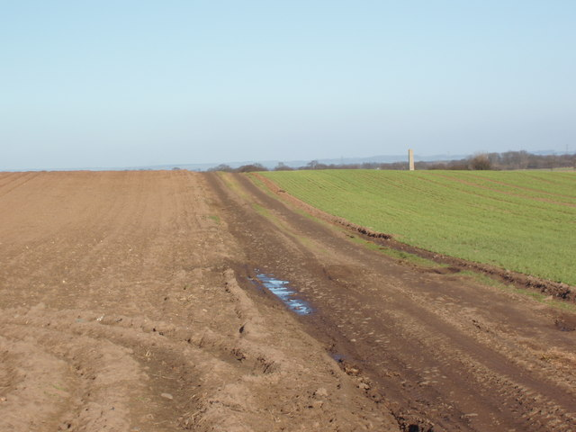 Lane on Marston Field, looking towards Tockwith Road, Long Marston