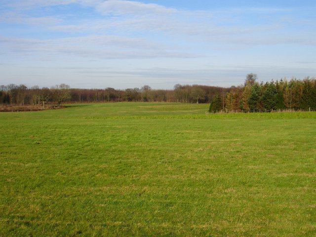 Farmland north of Flint Lane