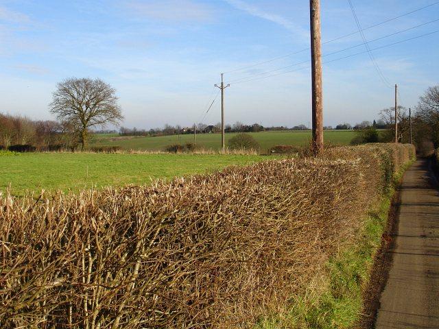 Newage Farm from Flint Lane