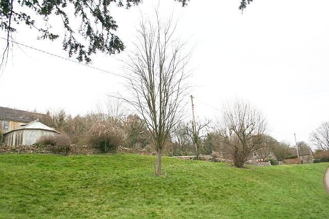 The Silver Jubilee Tree on Bournes Green
