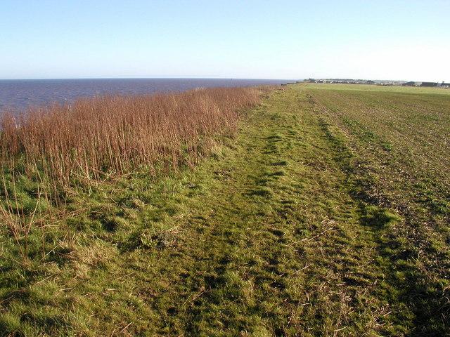 Cliff path north of Aldbrough