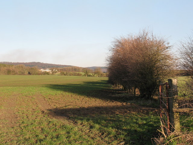Bridleway across farmland near Coxwold