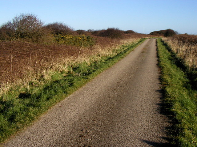 Road to the Coast