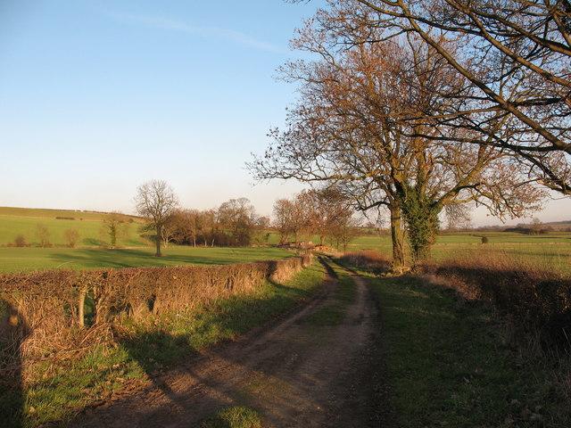 Lane to Angram Grange