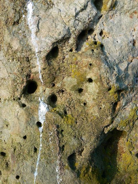 Richard Jefferies/Alfred Williams memorial stone - detail