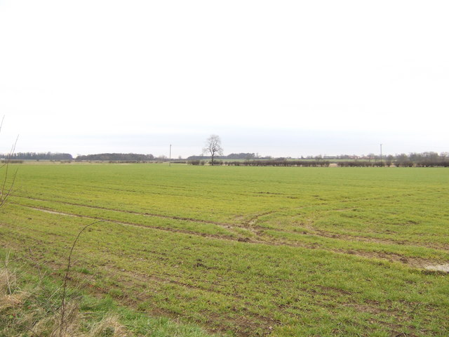 Open fields north of the A631