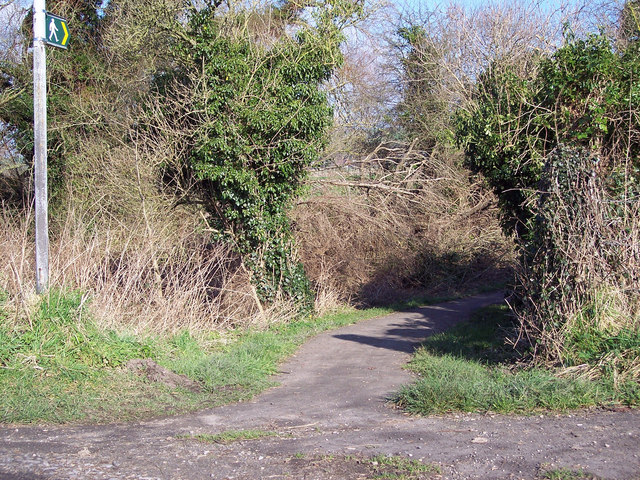 Footpath to South Newton