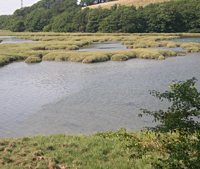 Liphill Quay Salt Marsh at High Tide