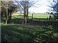 SJ4459 : Stile near Lea Newbold Farm by John S Turner