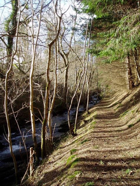 Footpath by  the Clywedog