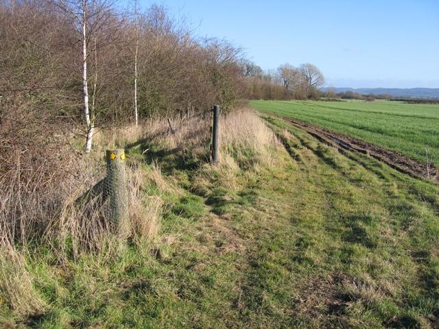 Footpath to Lea Newbold Farm