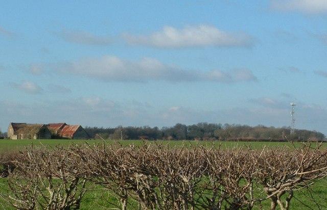 London Barn & Radio mast