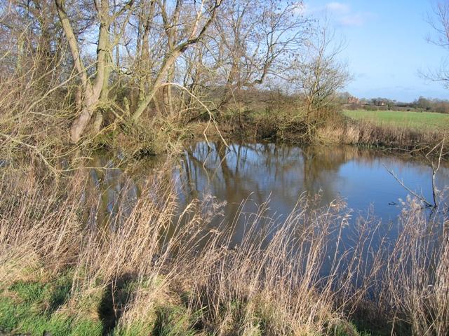 Pond near Lea Newbold Farm