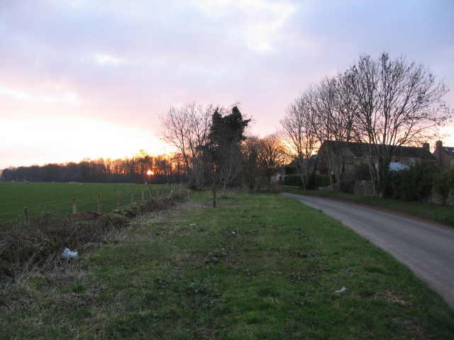 Sunset on Thickwood Lane