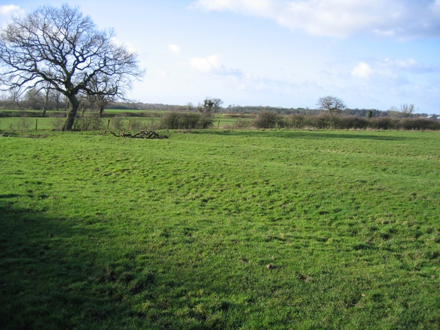 Ridge and Furrow Farmland