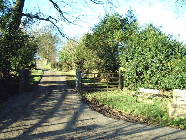 The Road to Bucks Farm
