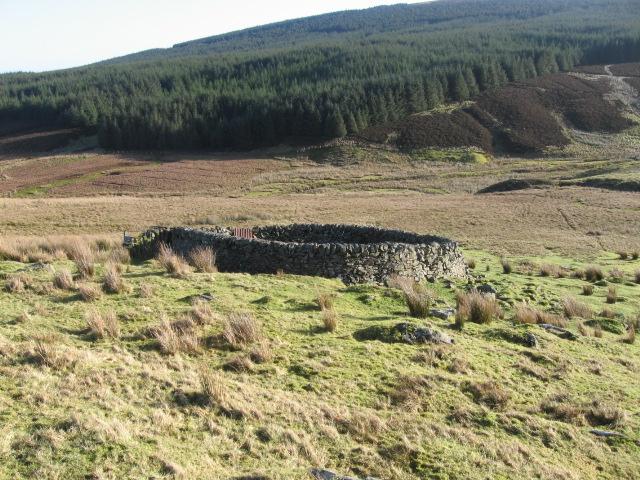 Sheepfold near Logan Water
