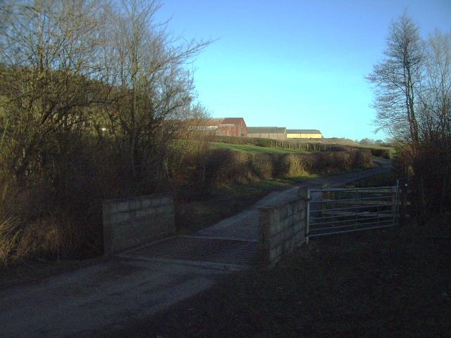 The Road to Dockber