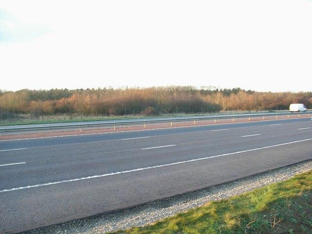 M40 & Shabbington Wood