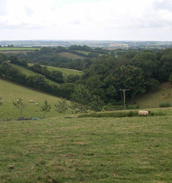 Valley near Wottens Farm