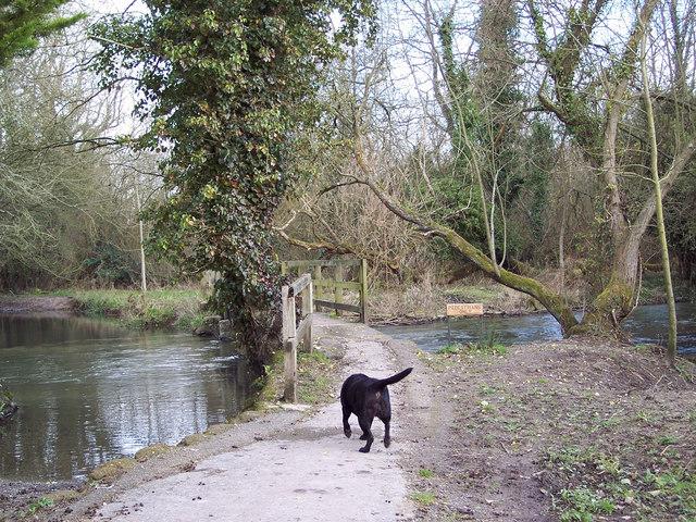 River Wylye at Sherrington