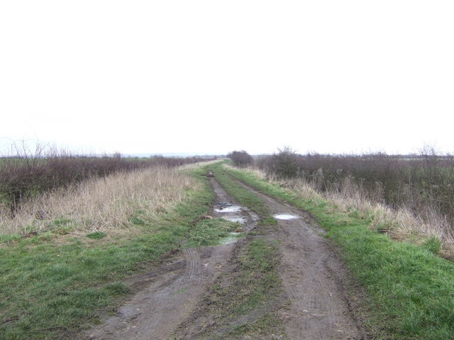 Atterby Carr Lane