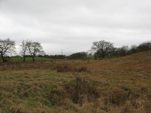 Hareshaw Moss