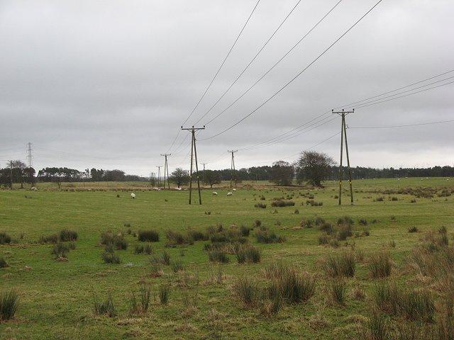 Wet fields, Penty