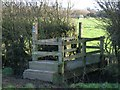 SJ4459 : Bridge Stile over Drainage Ditch by John S Turner