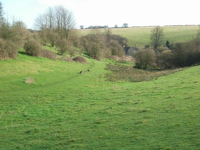 Handley Plain
