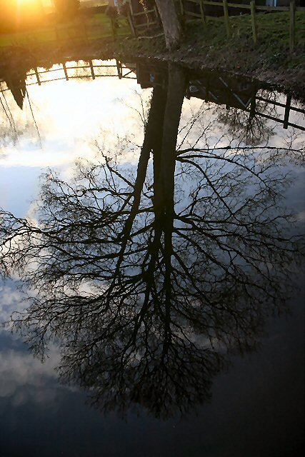 Moat reflection