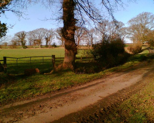 Lane near Durdar