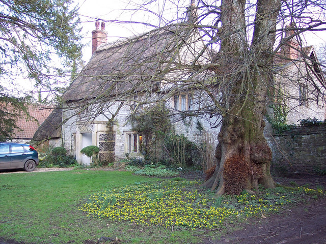 Spring Flowers and Cottage at Stockton