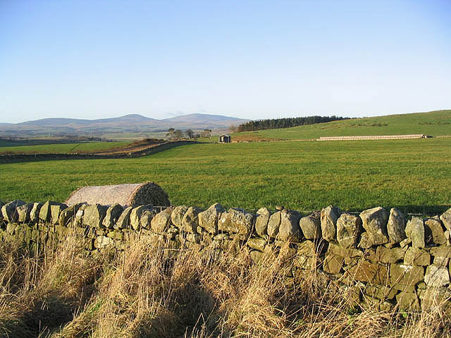 Farmland to the east of Chatton Park Farm