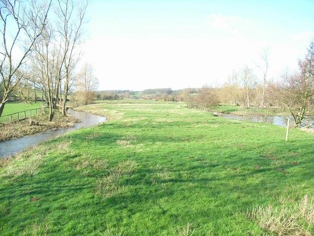 River Windrush(es)