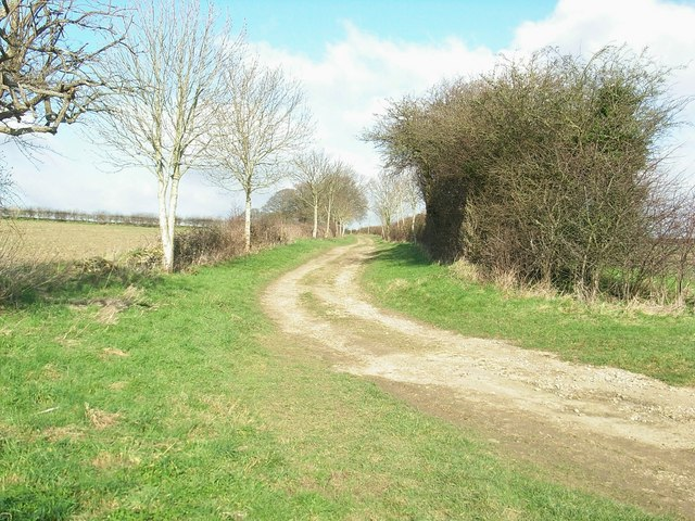 Track to Bockett's Corner