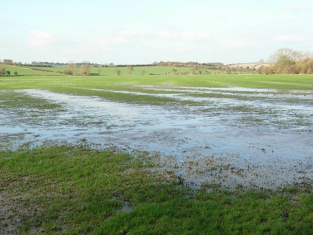 River Windrush flood plain